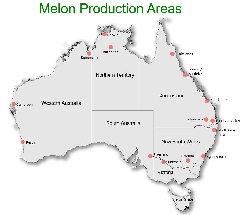 Melon production regions